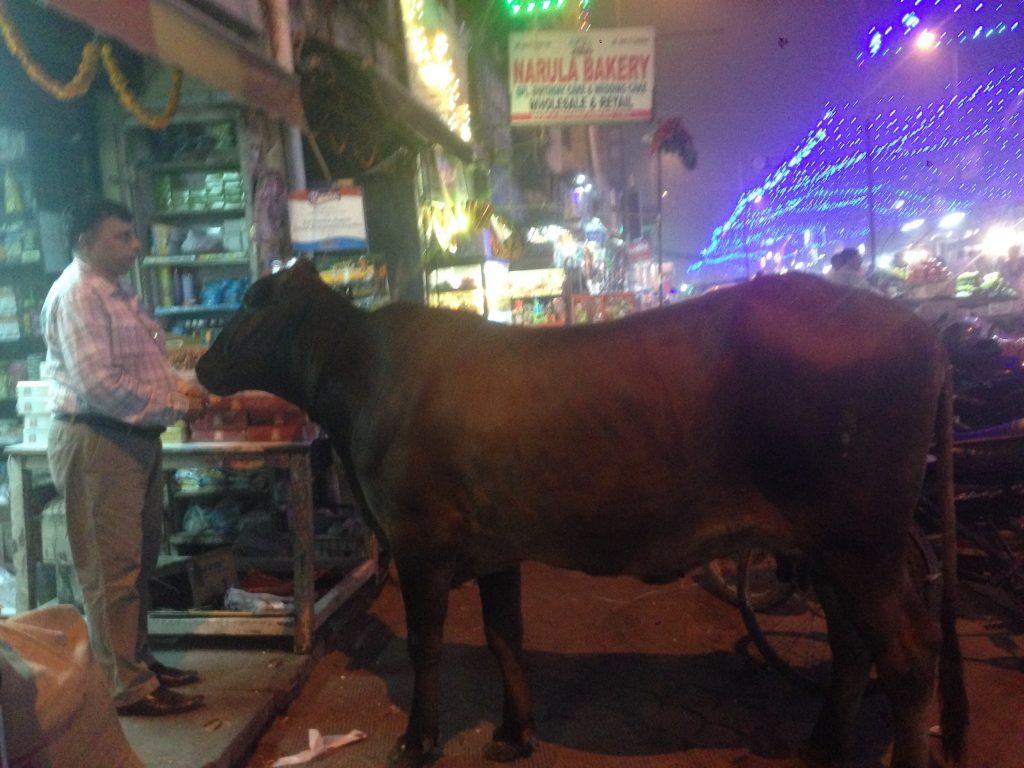三大うざい国の一つインドで【耳かきチャンピオン】と出会う! インドの詐欺手口あれこれ。