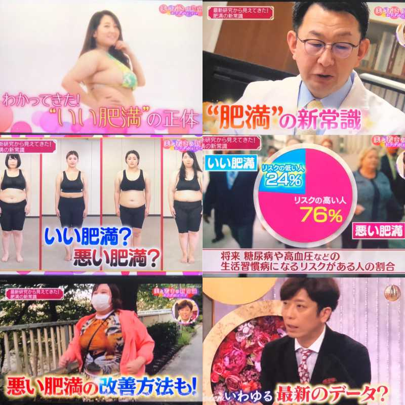 内臓脂肪を減らす食事。痩せホルモン:アディポネクチンとダイエット