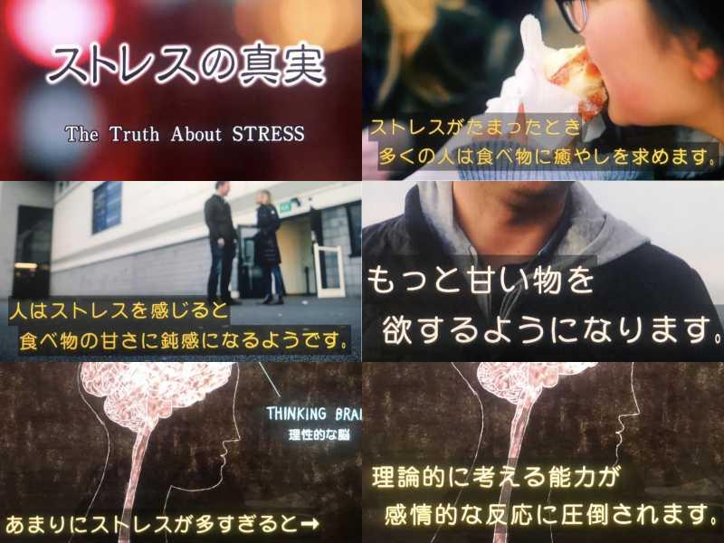 ストレスで食欲が暴発するのは、甘さを感じる味覚が鈍るから!