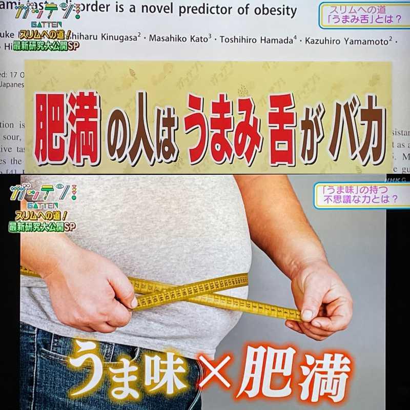 肥満の人はうまみ舌がバカ。うま味で痩せるダイエット!